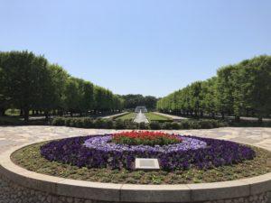 立川にあるクソでか自然マシマシエリア【国営昭和記念公園】 part1