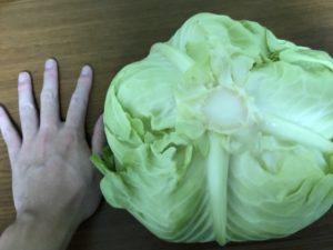 スーパーで野菜と果物買ってる奴、それ無駄だから。八百屋が最強なり。