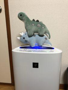 WEGOで買った恐竜のぬいぐるみが可愛すぎて尊い…